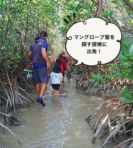 伊良部島で万ぐロープ蟹を探索♪