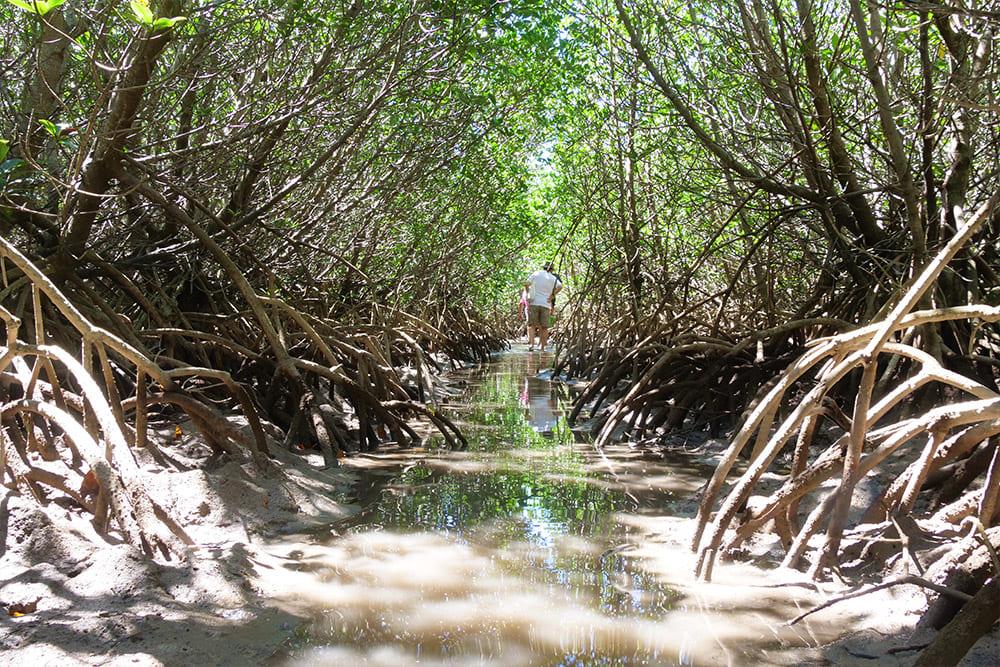 手つかずの伊良部島の美しい自然