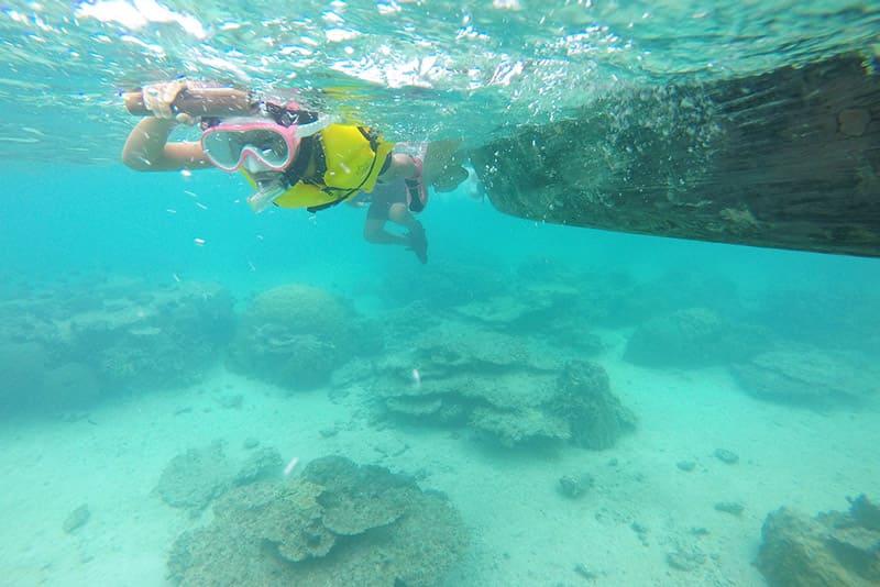 美しい伊良部島の海中
